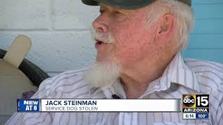 Valley veteran searching for stolen service dog and car
