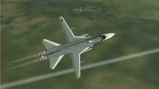 Virtual Fly with Flanker 2.5 Rokitg