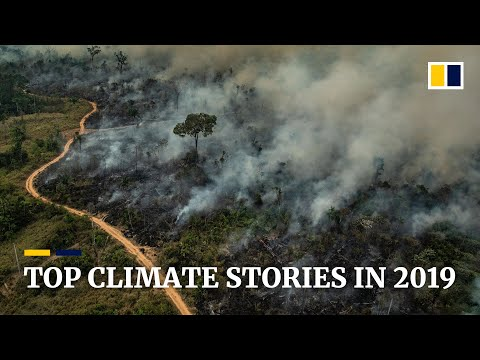 Top climate and environment stories of 2019
