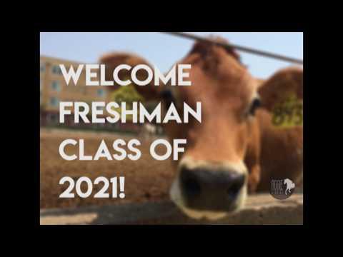 Welcome Reginas of 2021!