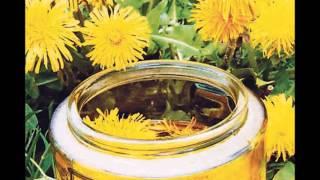 Настойка одуванчика свойства применения на спирту и водке