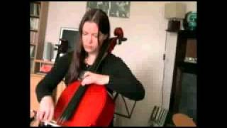 Stentor Student II Cello