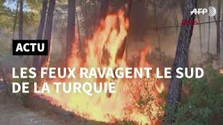 Turquie: violents incendies sur la côte sud touristique   AFP
