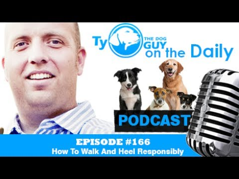 Episode #166 - How To Walk And Heel Responsibly - Utah Dog Trainer