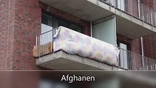 Asylwahnsinn in Hamburg - Es läuft nach Plan!