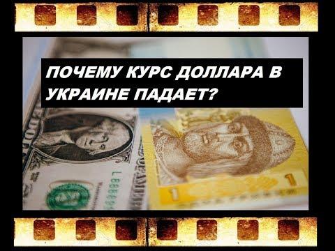ПОЧЕМУ КУРС ДОЛЛАРА к Гривне в УКРАИНЕ УПАЛ? 2019 год ЧТО БУДЕТ ДАЛЬШЕ с ГРИВНОЙ? Курс валют Украина