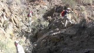 Hiking Palm Canyon East Fork - Palm Springs