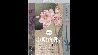 茅ヶ崎美術館 開館20周年記念 第2弾 版の美ー板にのせられたメッセージ(2)ー「原安三郎コレクション 小原古邨展ー花と鳥のエデンー」開催