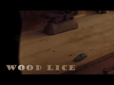 Doctor Who Unreleased Music - Knock Knock - Wood Lice