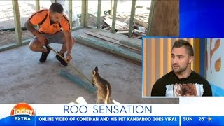 Australian Man That Has Kangaroo As Pet || Today Show Interview