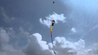 Skydog Kites Rainbow Dragon