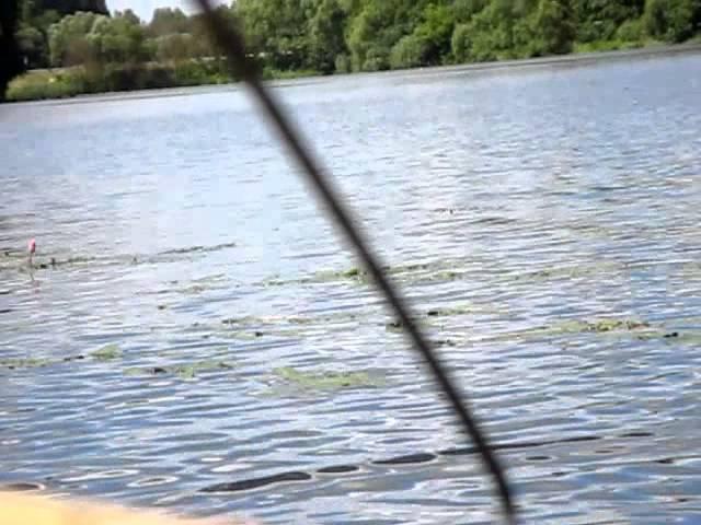 Ловля окуня на поплавочную удочку на малька (качество плохое)