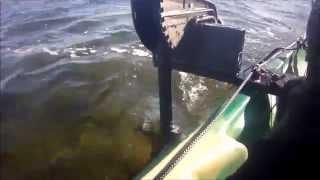 Gruissan essai Minn Kota 40 lbs sur ocean quatro Kayak, Pêche,spearfishing,moteur électrique.