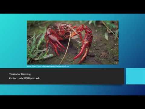 The Anatomy And Behavior Of The Crayfish