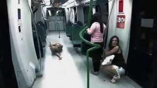 Broma Pesada - Zombies en el metro