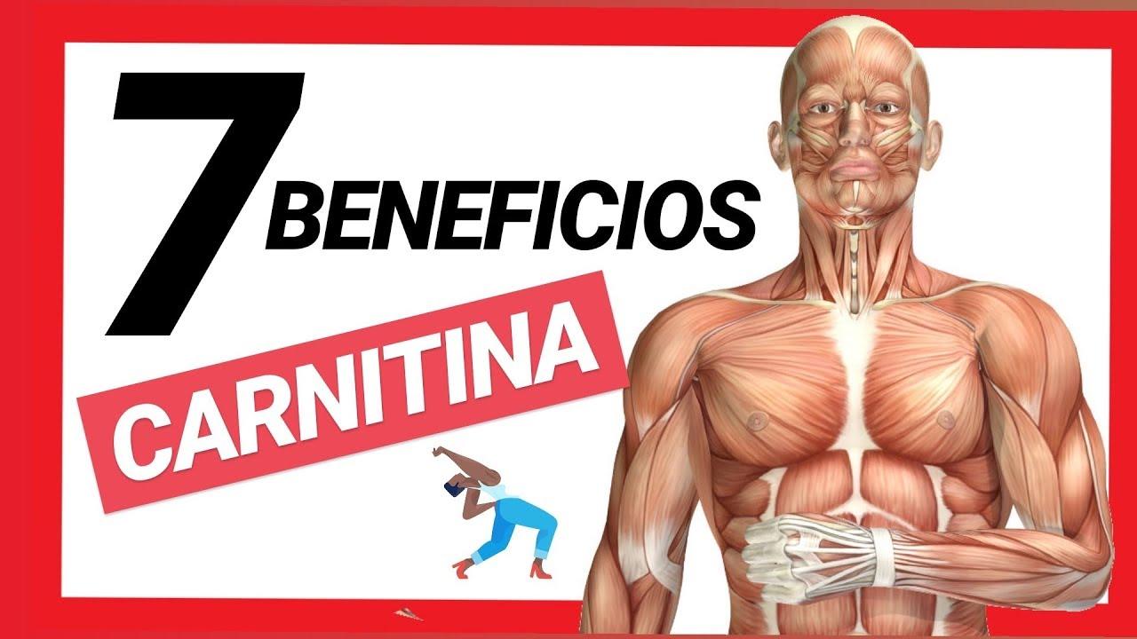 L carnitina sirve para quemar grasa abdominal