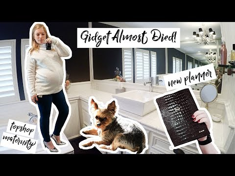 GIDGET ALMOST DIED!