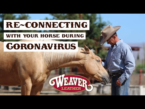 Re-Connecting With Your Horse During Coronavirus Episode 2: Matching Steps | Weaver Leather