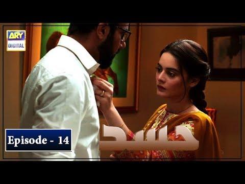 Download Hassad Episode 14   22nd July 2019   ARY Digital [Subtitle Eng]