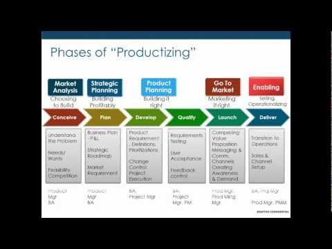 What is the Role of a Project Manager