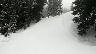 VASS Sit Ski at Mount Seymour