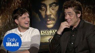 Josh Hutcherson and Benicio Del Toro talk Pablo Escobar film - Daily Mail