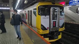 E257系500番台 5両編成 臨時特急 富士回遊90号 八王子駅発着 2020.03.09