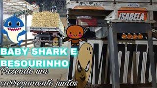 BABY SHARK E BESOURINHO FAZENDO O CARREGAMENTO JUNTOS