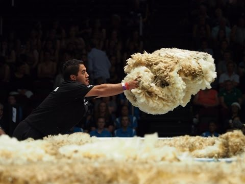 2017 World Shearing and Woolhandling Championships Full Highlights