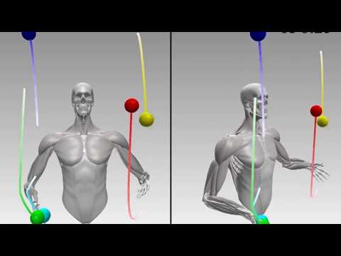 Dexterous Manipulation and Control with Volumetric Muscles