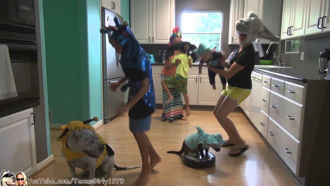 Original Sharkcat Does Dance Party Kitchen Like Harlem