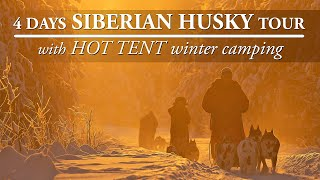 SIBERIAN HUSKY TOUR with HOT TENT WINTER CAMPING