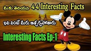 Amazing top telugu strange interesting facts in the world|44 interesting facts in telugu part 1|