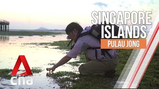 Singapore Islands: the rich marine life of Pulau Jong | The Islands That Made Us