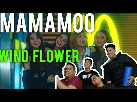 마마무 MAMAMOO WIND FLOWER (MV + Live reaction)
