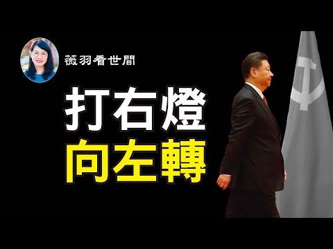 薇羽看世间:【第161期】习近平从深圳匆匆回京,有人猜是中招,有人猜是政变,而他还有一个死局,却无法破解。