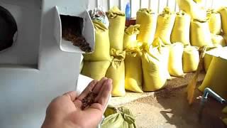 видео Зеленая гречка 500 г Образ жизни