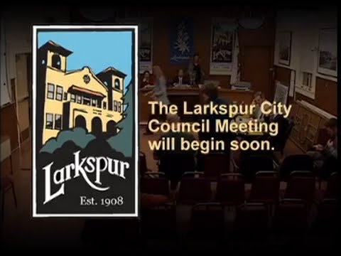 City Council Meeting August 19, 2015
