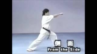 極真空手の型「最破」です。 KyokushinKata Saifa.