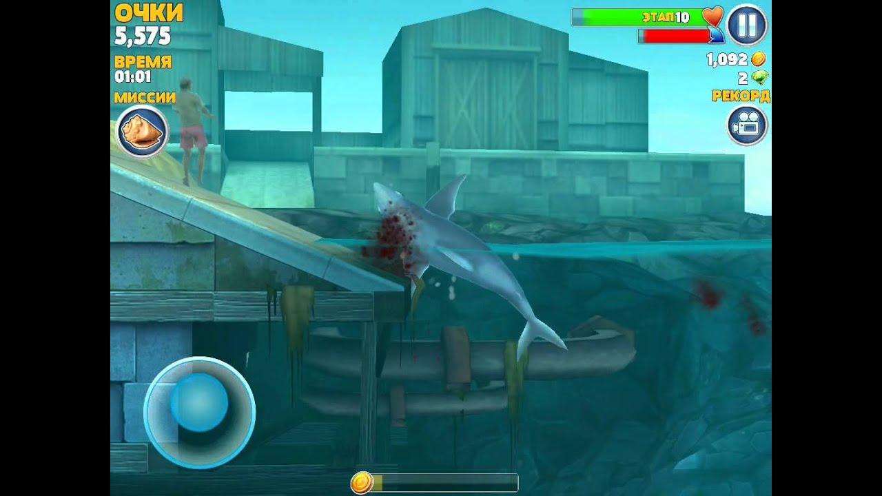 Скачать игру голодная акула на пк бесплатно