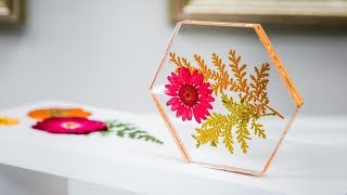 DIY Pressed Flower Coasters - Home & Family