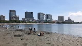 Tokyo Beach?