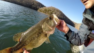 EastTNFishing: Top 5 Bass Fishing Catches Vol 1