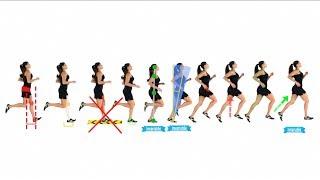 4 - 2: Anatomy of a Stride