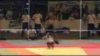 Le Petit Institut de Chine - Kungfu Wushu adultes