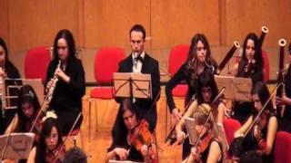Sinfonia Nº40 en sol menor  K550  W.A.Mozart (1756-1791)