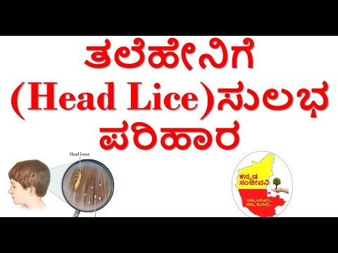 Home Remedies for Head Lice....Kannada Sanjeevani