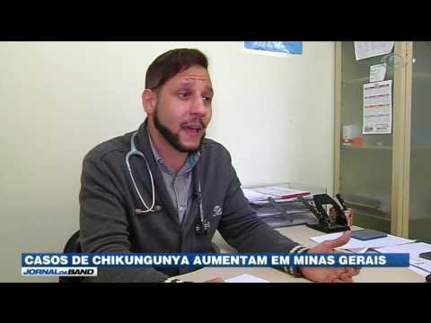 Casos de chikungunya aumentam em Minas Gerais