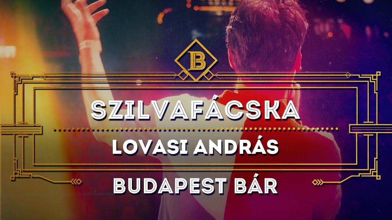 Szilvafácska - Lovasi András, Budapest Bár  @Budapest Park  , 2019. 07. 04.