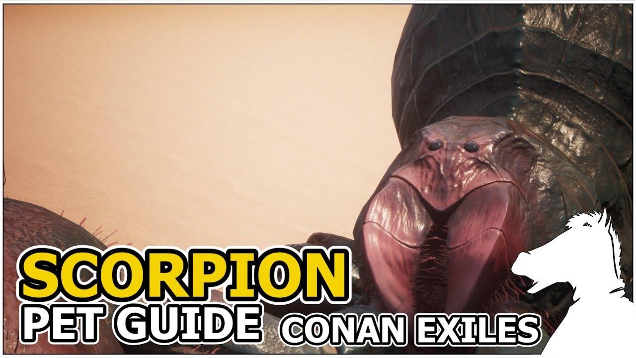 SCORPION   Pets Guide   CONAN EXILES